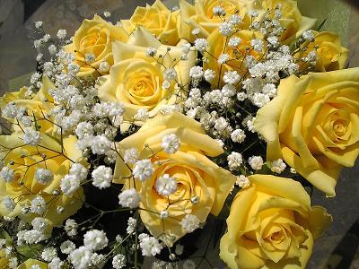 ジュピター(黄色)カスミ草の花束