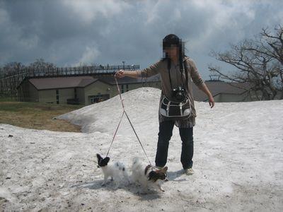 残雪・・ちょっと汚いけど登っちゃった♪