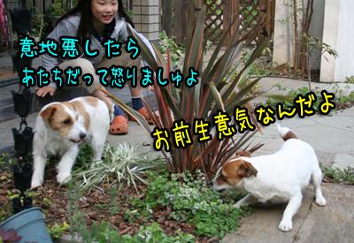 IMG_6431.jpg