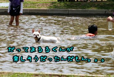 IMG_6754.jpg