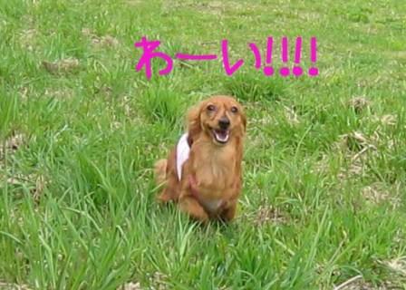 katashina080503 019のコピー