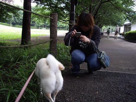 カメラマン@じゅんじゅん