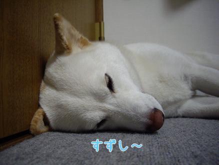よく寝てる凛ちゃん