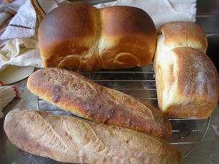 酒粕酵母でパン
