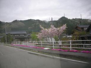 道の駅巡り 006