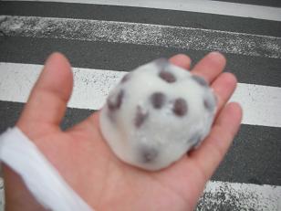 うた・たね京都旅2008 024