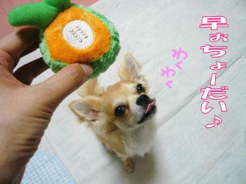 syasin_0705_002