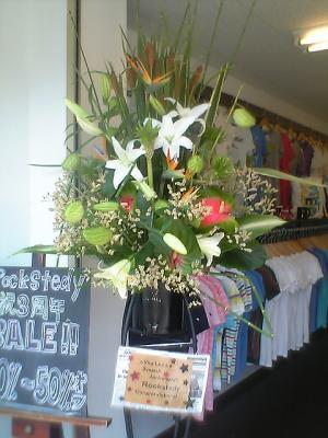 ロックステディースタンド花