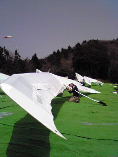 Itagaki's ATOS VQ