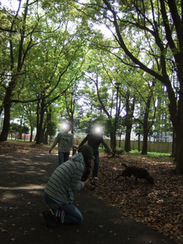 2008_04270052.jpg