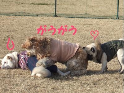 200801走初4