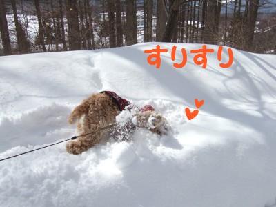 20080301雪あそび2