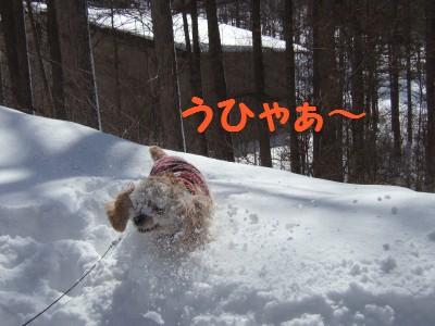 20080301雪あそび4
