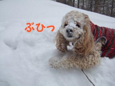 20080301雪あそび6