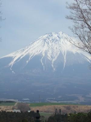 200804ハーバル富士山