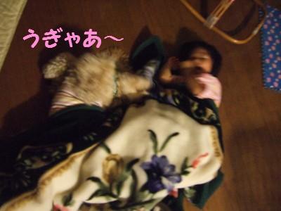 20080719メル毛布