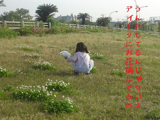 2008.5.16.2