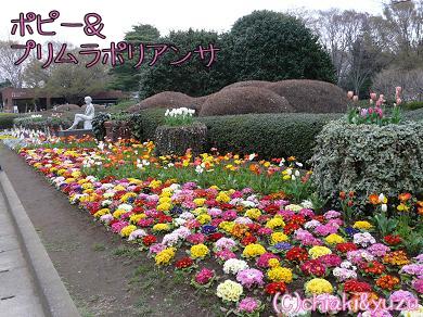 20080328-1.jpg