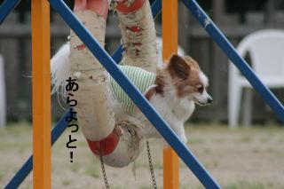 2008GW貴志川 0000