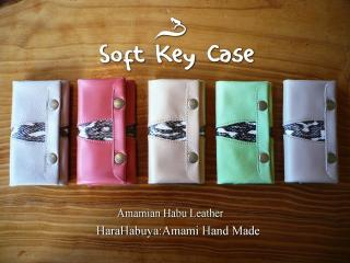 soft-key01.jpg