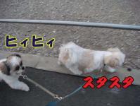 20080730-5jpg.jpg