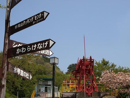 リフトと桜