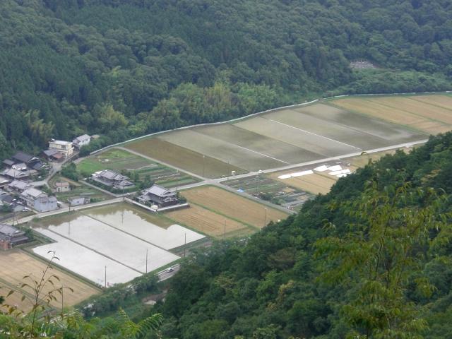 200622・田宴アート9