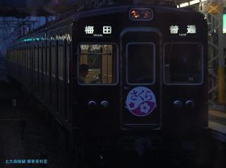 阪急サクラ 08 2