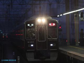 阪急サクラ 08 3