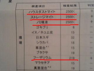 20051209191813.jpg