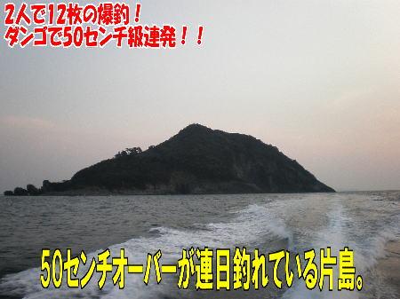 4月1日三平top