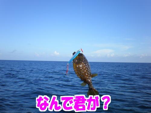 7月28日満瀬04