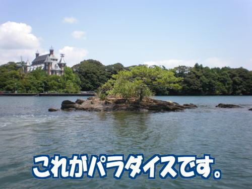 大村湾のチヌ00