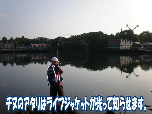 大村湾のチヌ4
