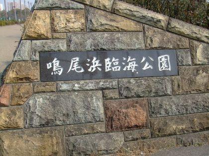 2008_03140046.jpg
