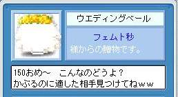 Maple740.jpg