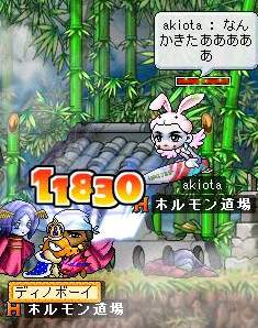 Maple755.jpg