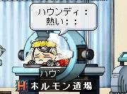Maple762.jpg