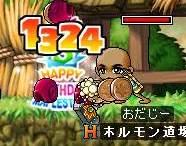 Maple763.jpg