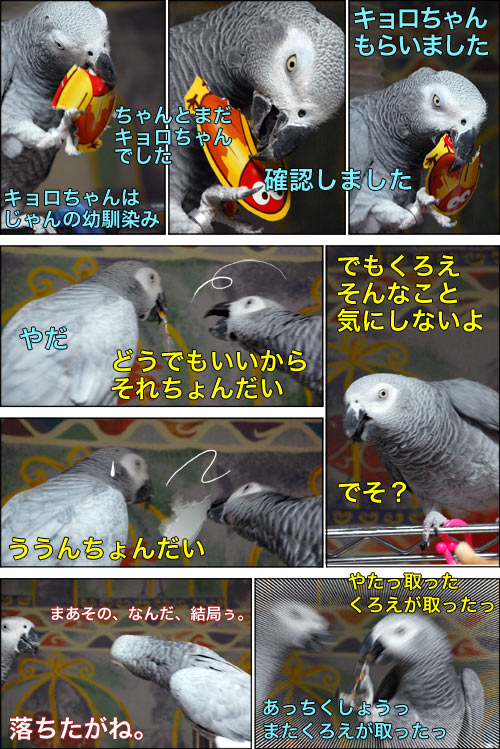 ノンフィクション劇場-No.08