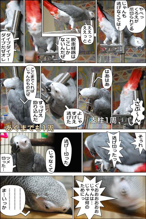 ノンフィクション劇場-No.13