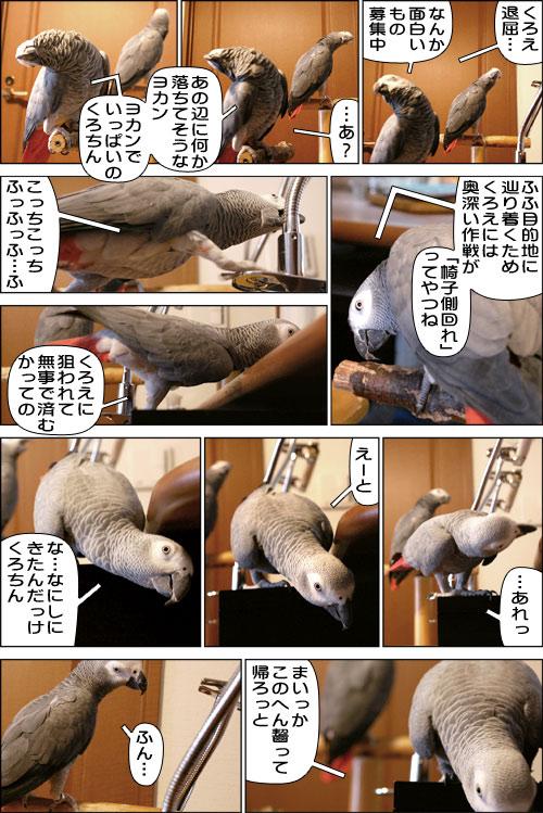 ノンフィクション劇場-No.15