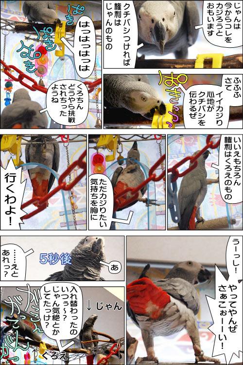 ノンフィクション劇場-No.17