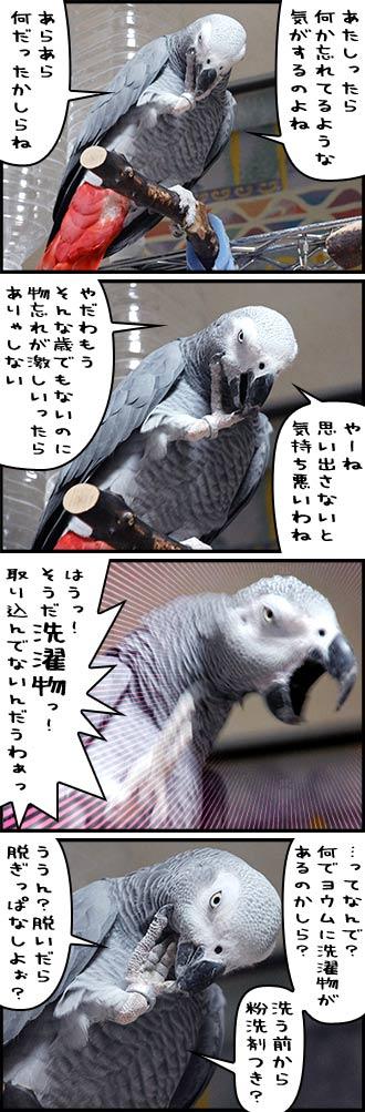 じゃんくろ劇場-No.37