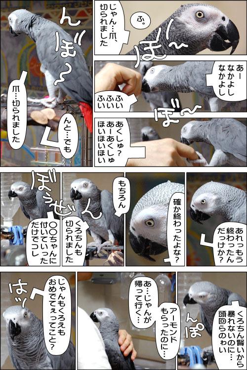 ノンフィクション劇場-No.19