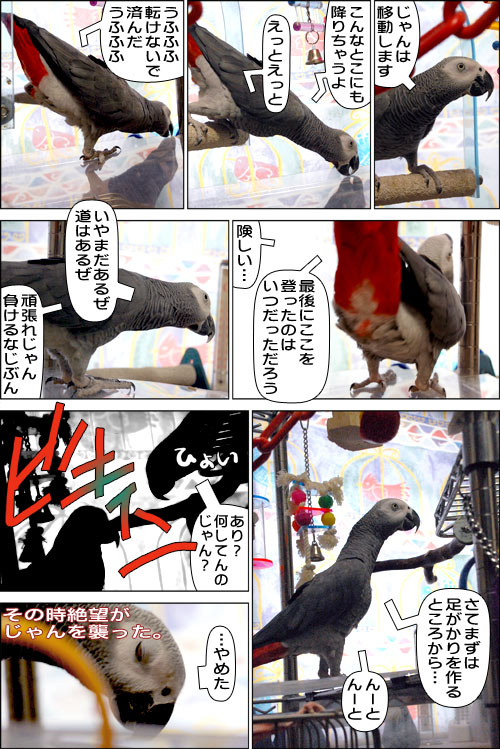 ノンフィクション劇場-No.21
