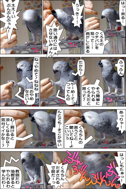 ノンフィクション劇場-No.26