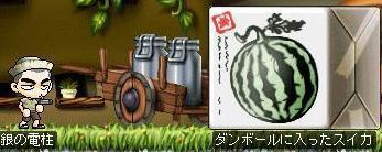 コピー ~ Maple0004