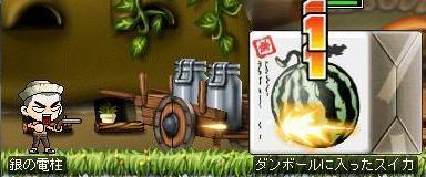 コピー ~ Maple0008