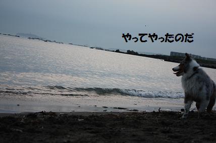IMG_0904a.jpg